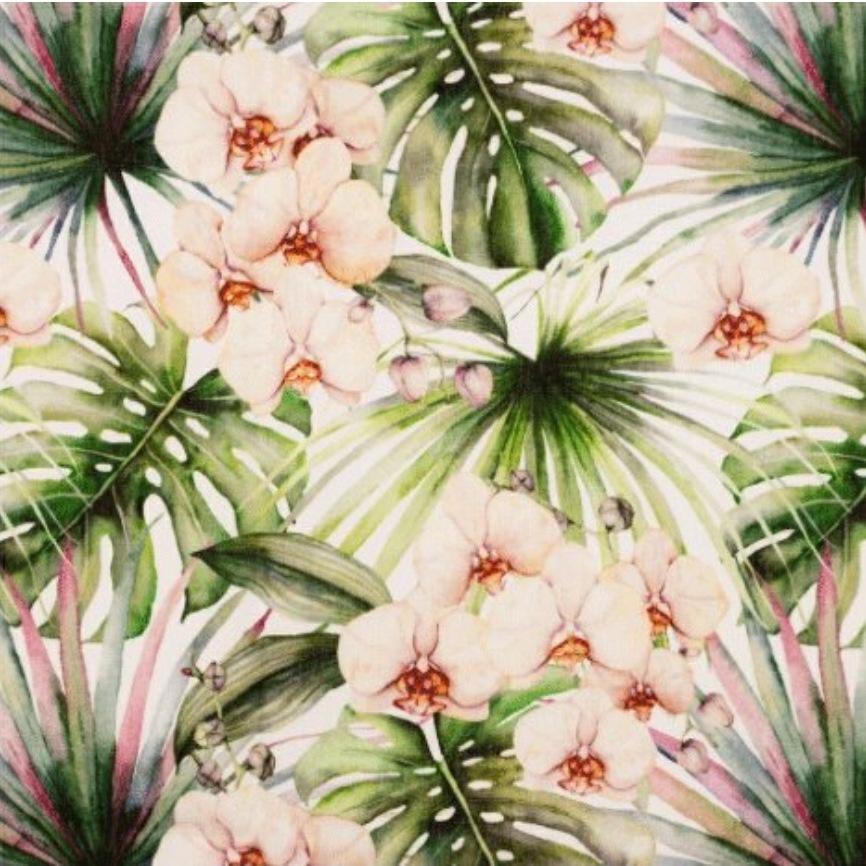 Katoen - Orchidee